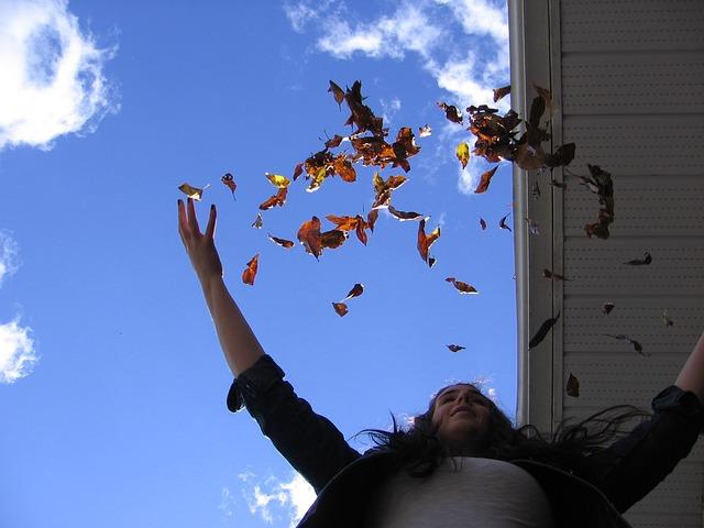 leaves-345319_640