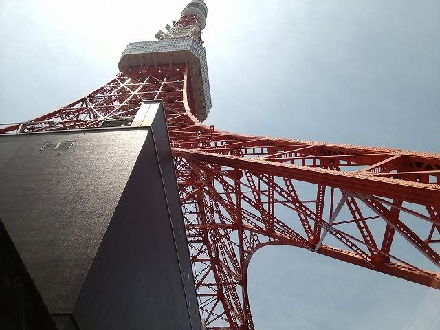 東京タワー 大きい
