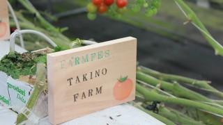 ワンコインでマイ農場が持てるサービス「FARMFES」が登場!